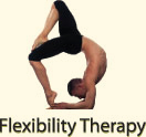 Flexibility Therapy Icon